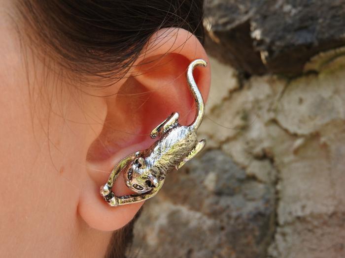 Malý průvodce správnou péčí o uši