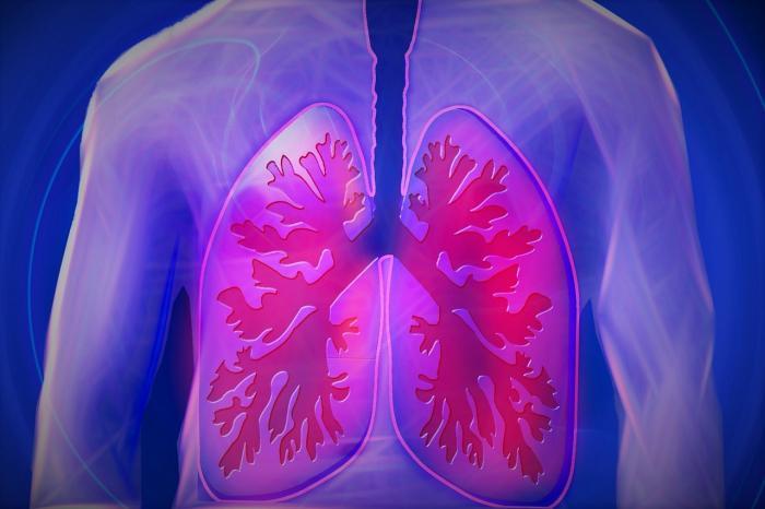 Cystická fibróza, nemoc s vůní soli