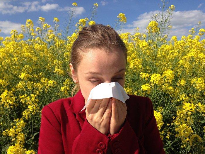 Nepřiměřená imunitní reakce - alergie