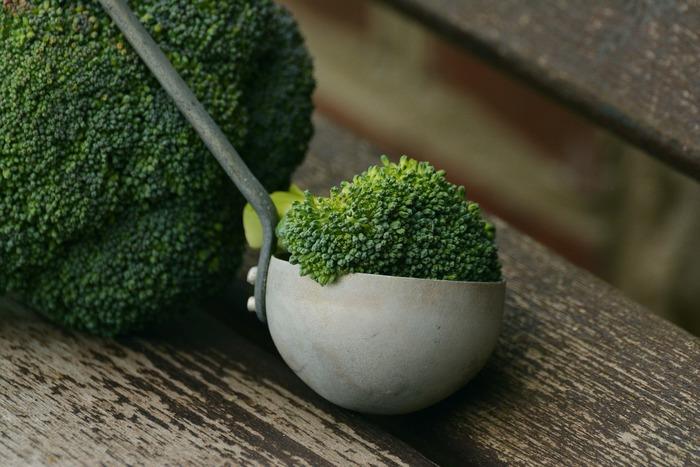 Brokolicí proti mozkové mrtvici