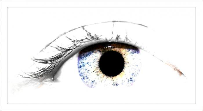 I nevidomí chtějí být vidět