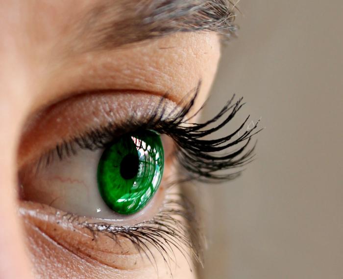 Tyflopedie pomáhá nevidomým a slabozrakým. Jak a v čem?