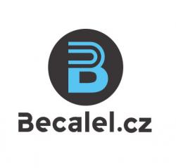 Ben becalel, komunitní a výrobní družstvo